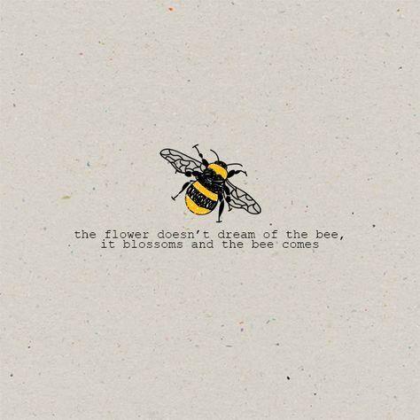 Bee & Beehive Things We LOVE - Sweet Bee Quotes