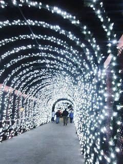 Christmas Things To Do In Cincinnati : christmas, things, cincinnati, Q102/WKRQ, Things, Cincinnati, Travel,