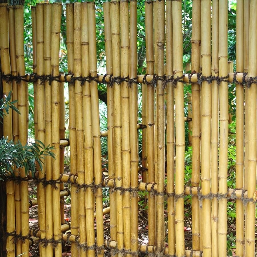 Outdoor Bamboo Fencing Diy Bamboo Fence Ideas Style Pictures Front