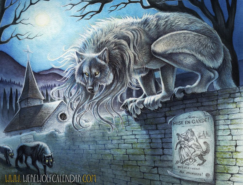 "<a href=""http://thornwolf.deviantart.com/"" target=""_blank""> Art by Thornwolf</a> <br><br> It is no coincidence that werewolves continue to considered fabled beasts of yore, as they take great care to remain elusive to humans. Sightings are more often than not the result of an inexperienced young rogue coming too close to human populations in an attempt to survive on their own, which can stir up new fables and tales of fearsome beasts that are half man, half wolf. The majority of werewolves…"