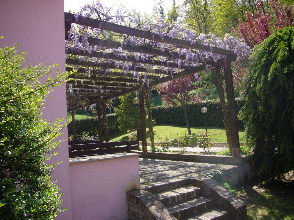Pergolato di legno con rampicanti glicine pergolati - Pergola giardino ...