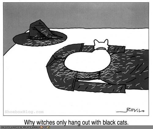 Kitteh Komic of teh Day: I Gave That Witch Some Cat Hair.  Witches Love Cat Hair.