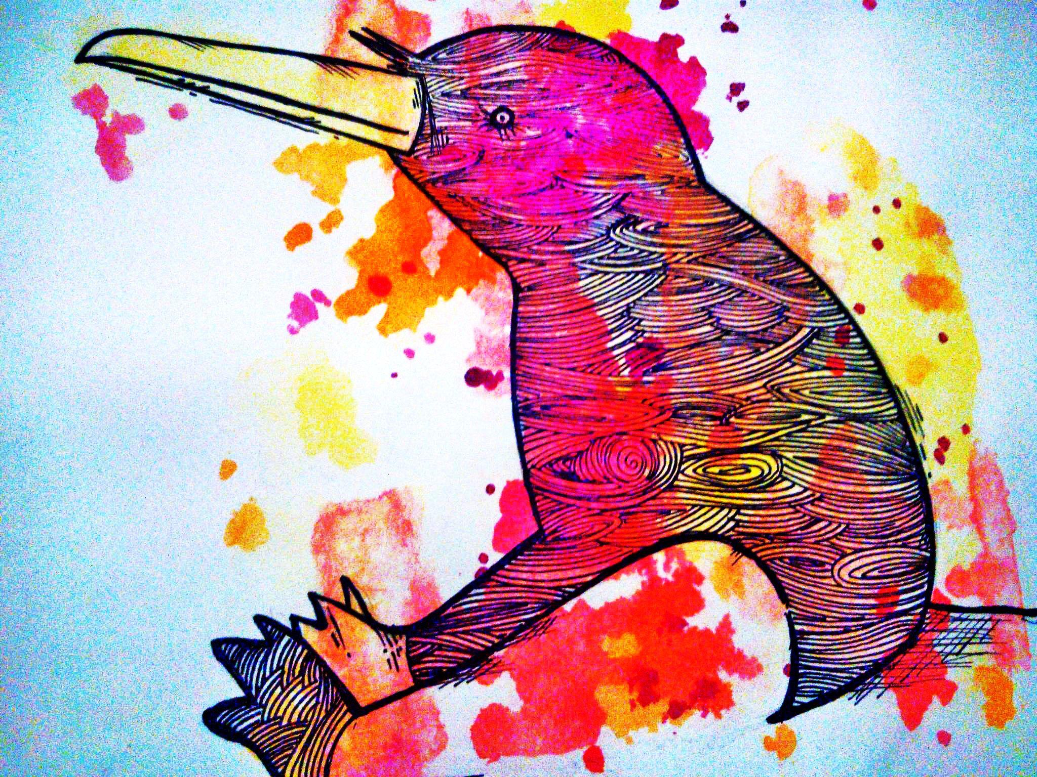 My work-Cristina Augello- KIWI BIRD