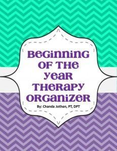 Therapy Organization - Pink Oatmeal