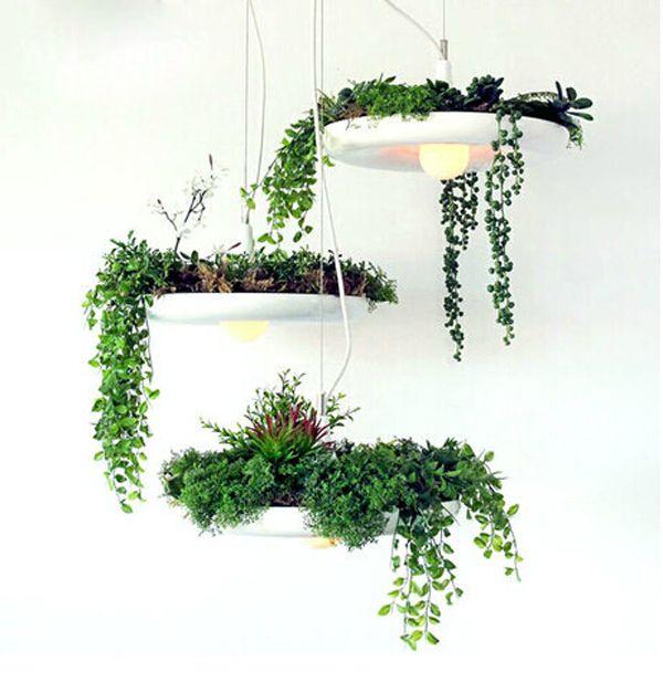 Personality IKEA garden flowerpot air garden plants Babylon Babylon hanging chandelier lamp