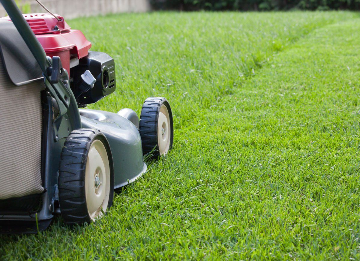 The Best Things You Can Do for Your Yard This Fall Lawn