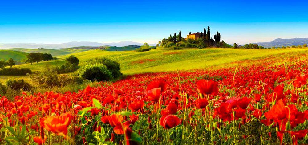 42.jpg (1000×472) | Landschaftsbilder, Toskana, Landschaftsbau