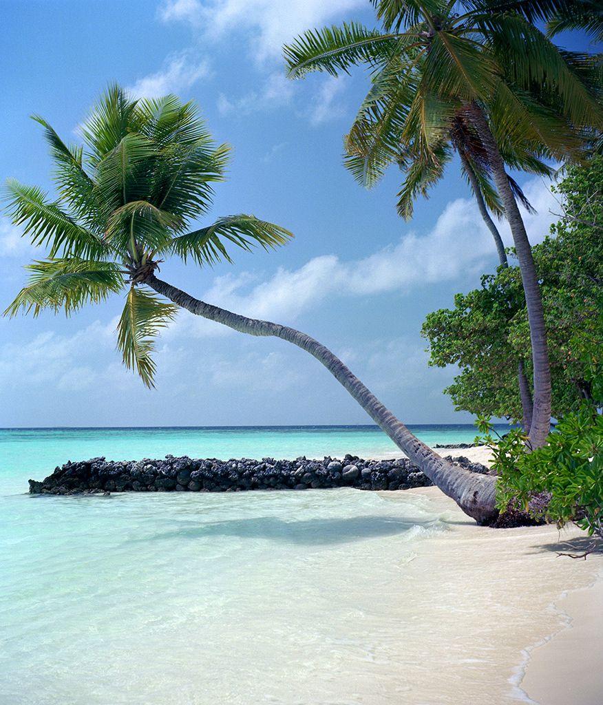 Paradise island Maldives...cant wait for the honeymoon!