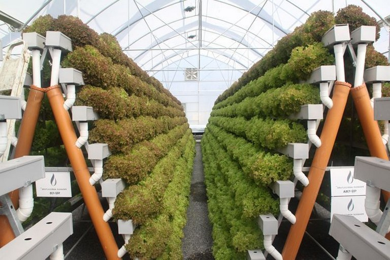 35+ Inspiring Hydroponic Gardening Ideas is part of Hydroponic gardening, Hydroponic farming, Vertical farming, Aquaponics, Hydroponic growing, Hydroponics - A lot of people are now looking for hydroponic gardening ideas  It is believed that gardening is something very delightful to do  You can keep plants and arrange them to look absolutely dashing  However, the obstacle for most people these… Continue Reading →