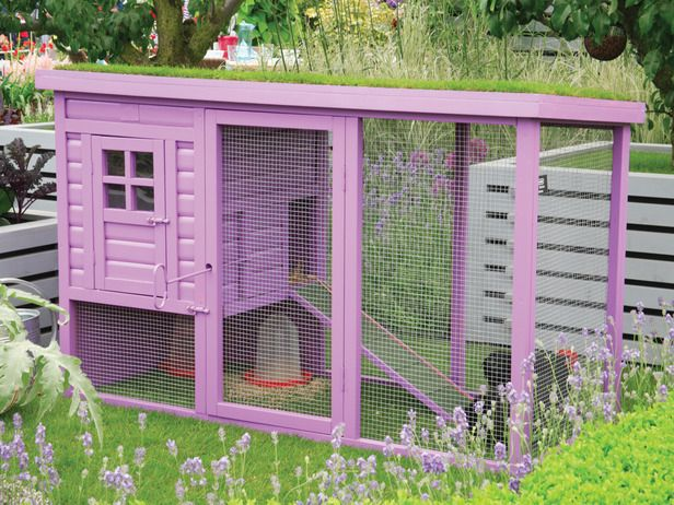17 Best 1000 images about Bunnies on Pinterest Hutch ideas Coops and