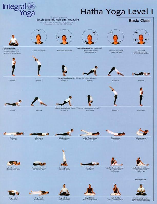 Hatha Yoga Level 1 Google Haku Hatha Yoga Poses Hatha Yoga Yoga Asanas