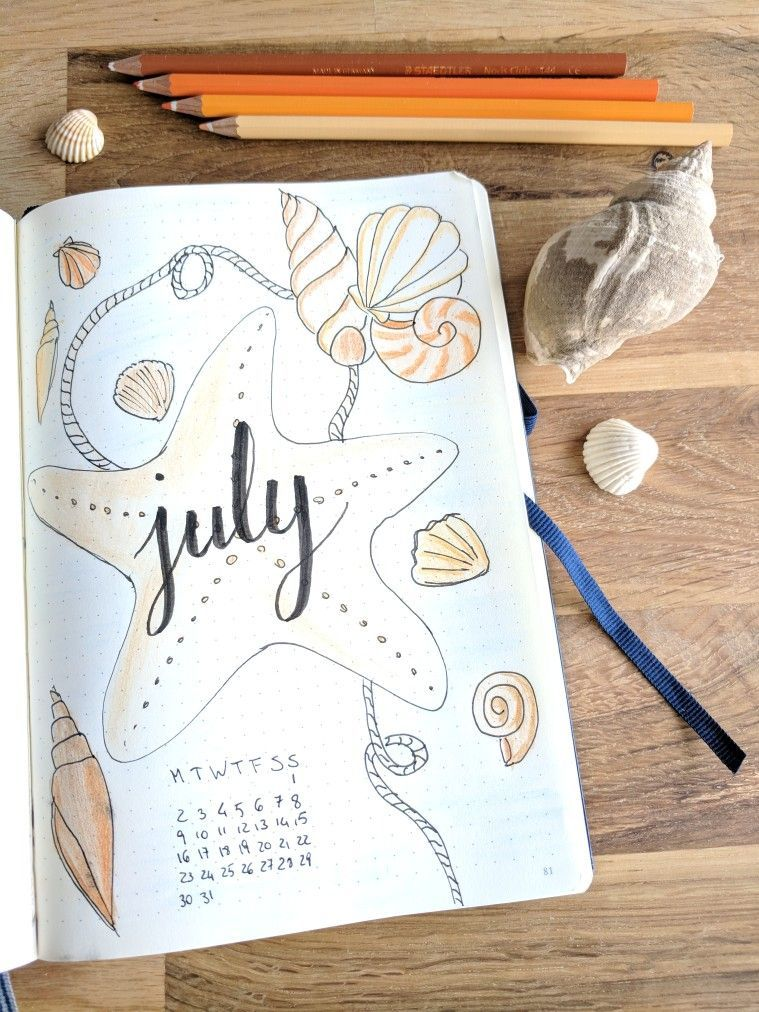 July bullet journal month page - seashells illustration