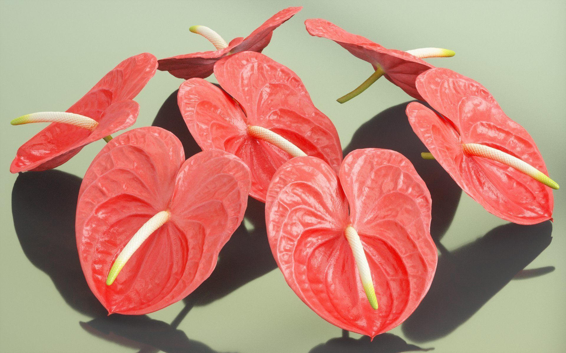 Pin by CGTrader on 3D Plant in 2019 Rainforest flowers