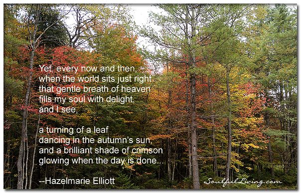 Yet, every now and then, when the world sits just right ~ that gentle breath of heaven fills my soul with delight, and I see, a turning of a leaf dancing in the autumn's sun, and a brilliant shade of crimson glowing when the day is done… –Hazelmarie Elliott  http://www.soulfulliving.com