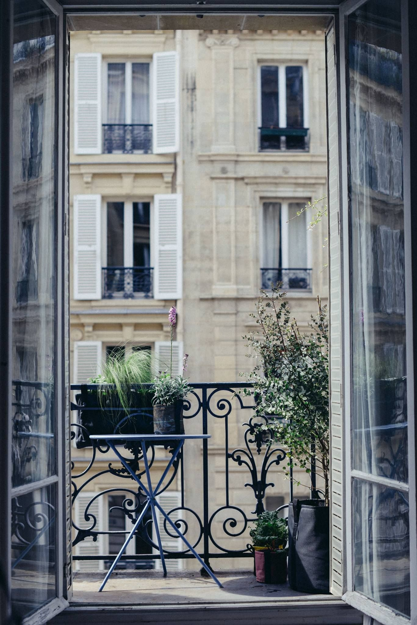 un beau balcon parisien v g talis avec des pots et. Black Bedroom Furniture Sets. Home Design Ideas