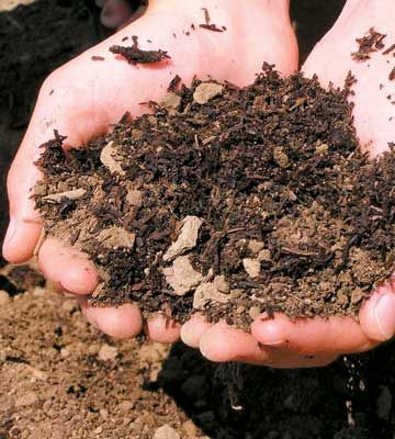 How To Prepare The Best Organic Soil. Countrywomanmagazine.com