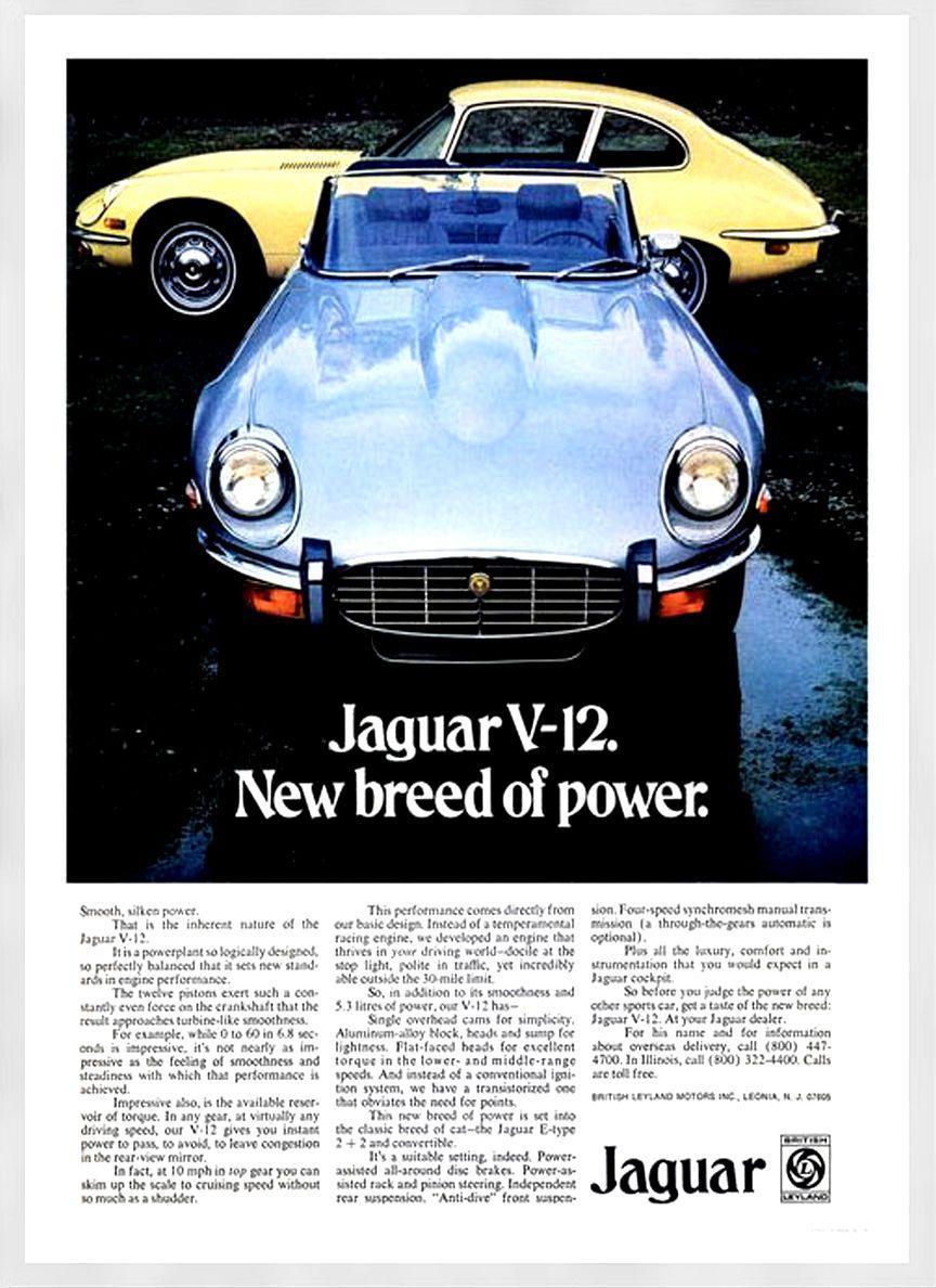 Vintage Car Advert 1 Jaguar e type, Jaguar e