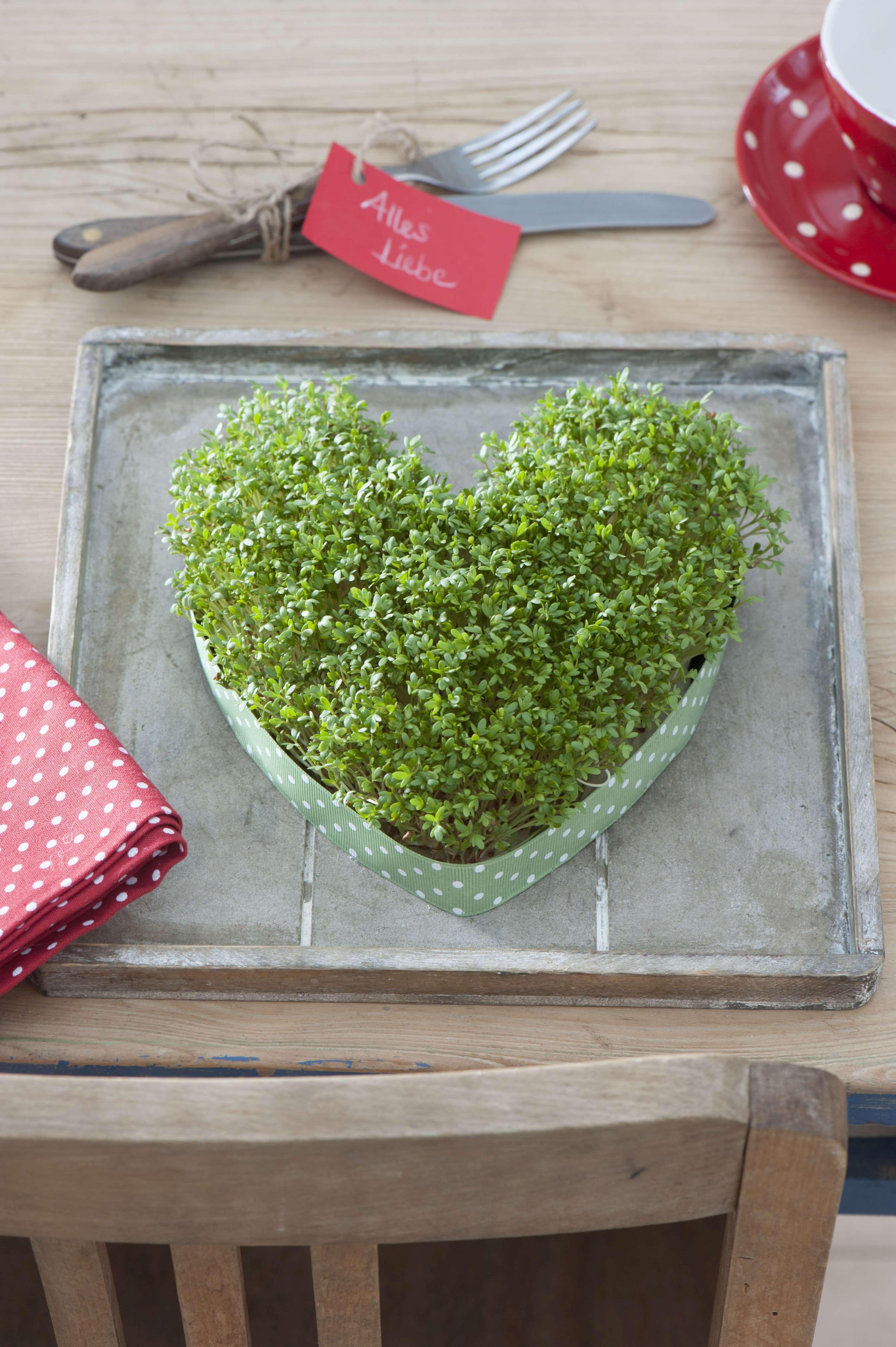 Valentinstagsgeschenke Fur Sie Und Ihn Valentinstagsgeschenk Fur Ihn Geschenke Geschenkideen