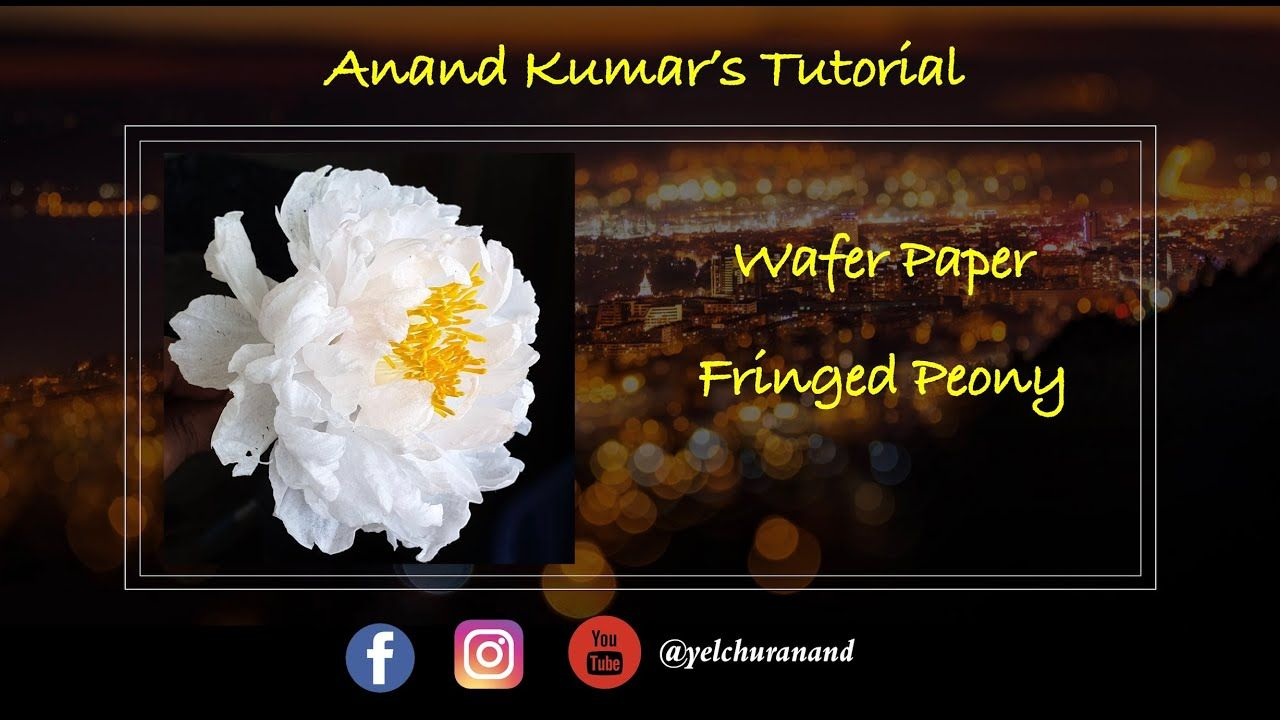 Wafer Paper Fringed Peony By Anand Kumar Youtube Wafer Paper Flowers Wafer Paper Paper Flowers