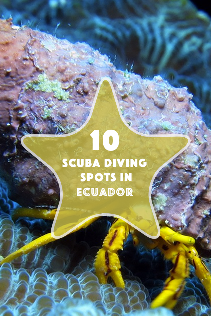 Best Places To Scuba Dive In Ecuador Travel To Blank Travel - 10 best places to learn to dive the padi way