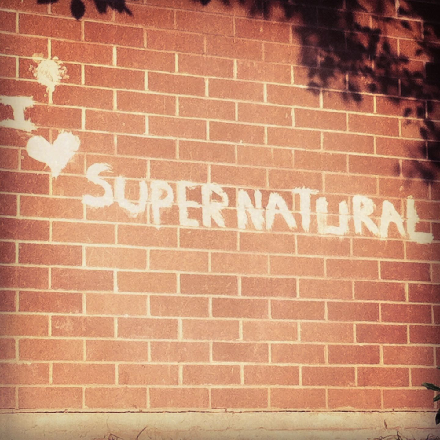 Everybody loves Supernatural