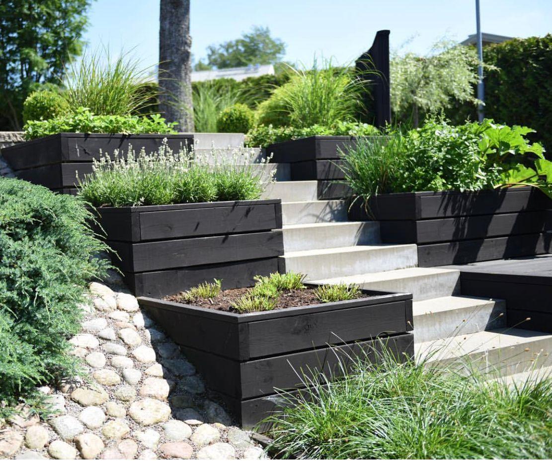 Simple Terrace Garden: Pin På Village Garden Design