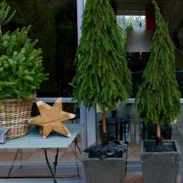 Herz aus Weinranken #weihnachtendekorationdraussengarten