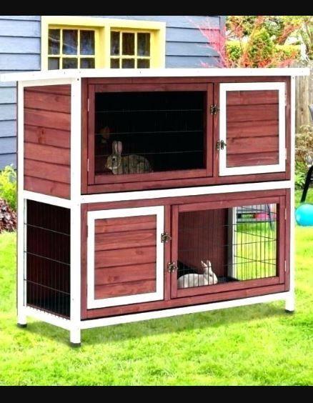 Photo of 45+ kostenlose Rabbit Hutch-Pläne, die Sie als Wochenendprojekt durchführen können.- Einfach zu befolgen …