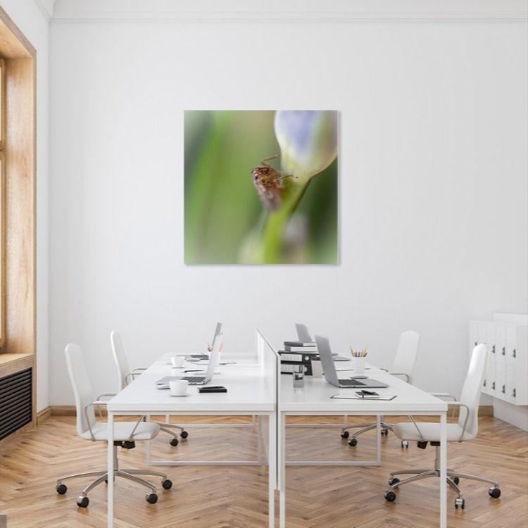 Sprinkhaan Fotocadeaus Interieur Wanddecoraties