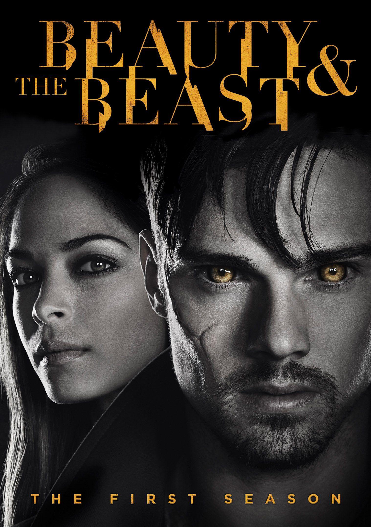 Beauty And The Beast Season 1 Starring Brian White Sendhil