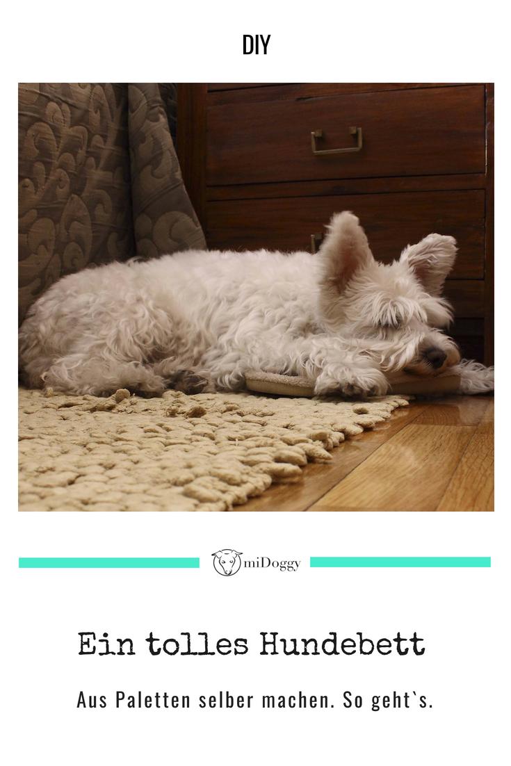 Hundebett Aus Paletten Selbst Gemacht Hunde Bett Hunde Und