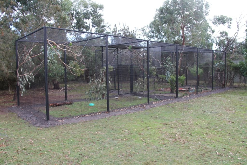 New aviaries for parrots and bowerbirds » Moonlit Sanctuary Gallery