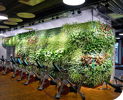 Awesome Suite Plantsu0027 Living Wall System Is Beautiful, And Easy. Our Outdoor And  Indoor Plant Walls Let You Add A Touch Of Green To Any Space.