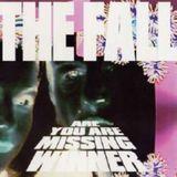 Are You Are Missing Winner [Bonus Tracks] [CD] [PA]