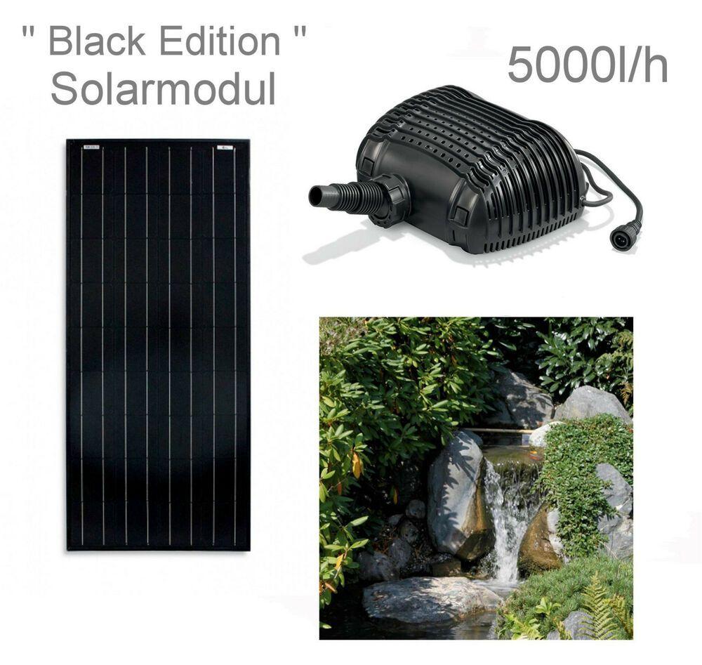 100w Solar Bachlaufpumpe Teichpumpe Solarpumpe Gartenteichpumpe