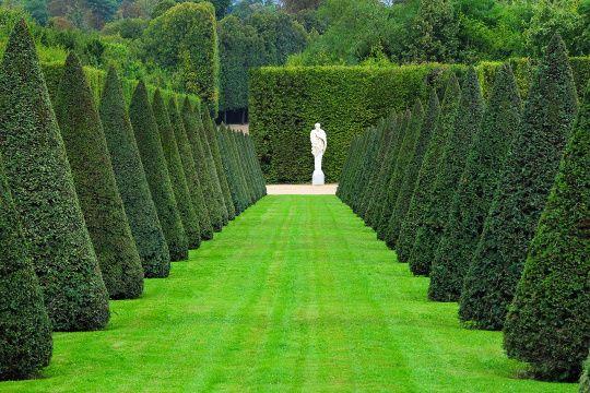 L 39 ann e andr le n tre en 10 jardins le chateau de for Entretien jardin versailles