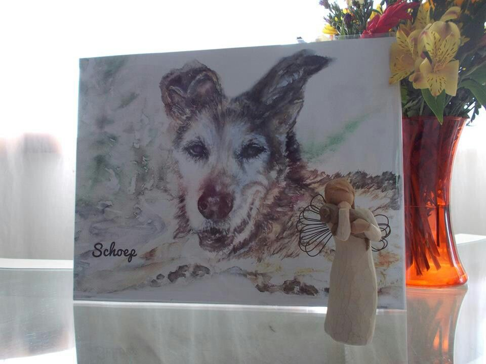 Sweet Schoep...you will be missed.