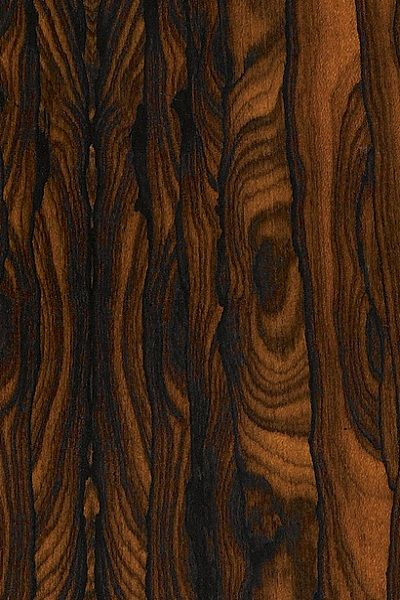 Ziricote A Viable Alternative To Macassar Ebony Wood Veneer