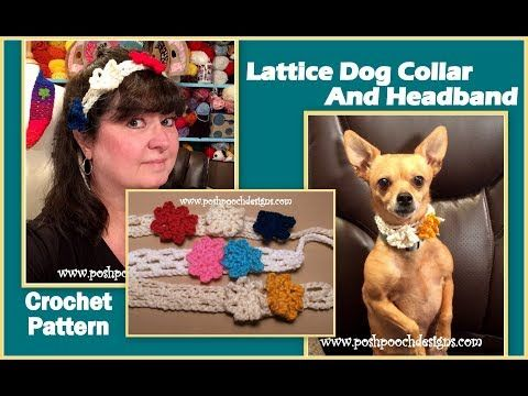 Lattice Dog Collar Crochet Pattern Dog Collars Headband Crochet