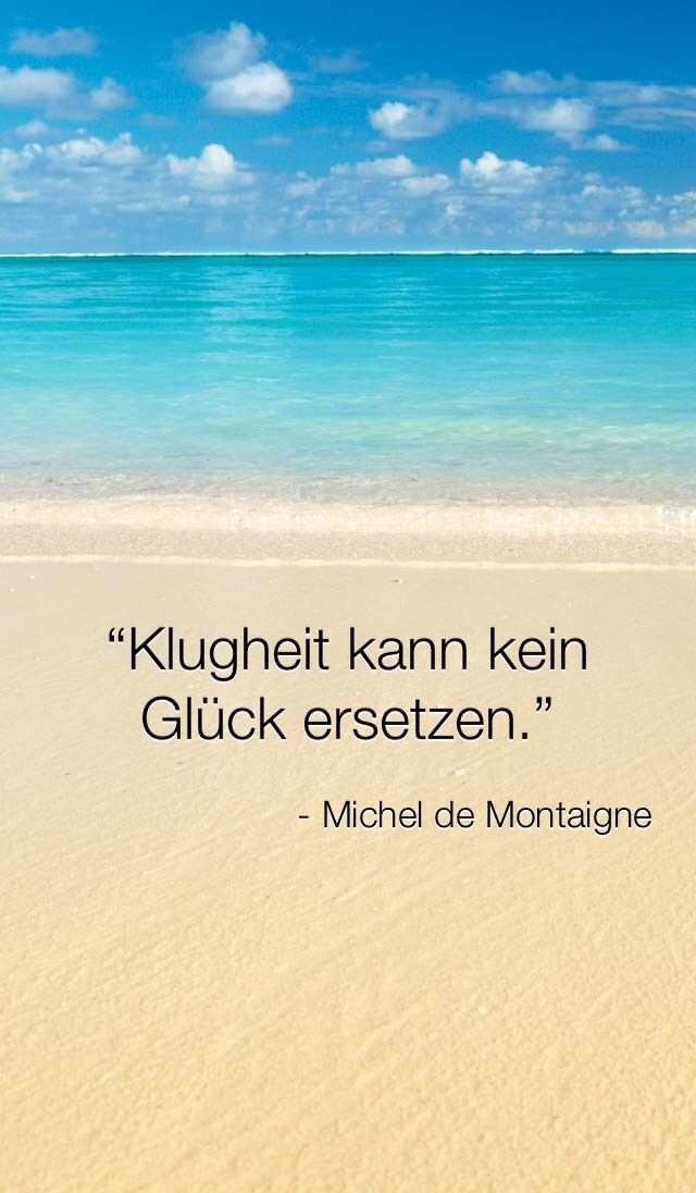 Klugheit kann kein Glück ersetzen. - Michel de Montaigne