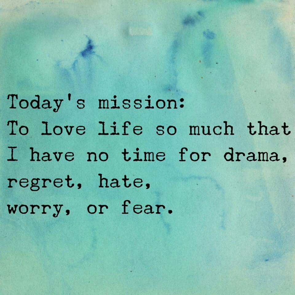 Philosophy In Life Quotes Mission Possible  Inspiration  Pinterest