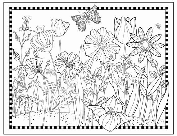 Vegetable Garden Coloring Pages Printable Beautiful Printable