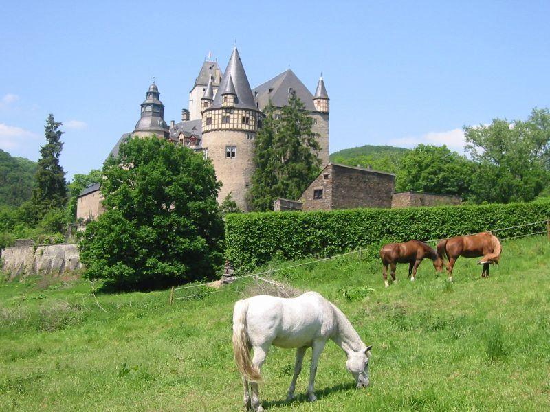 Eifel Germany castles | Panoramio - Photo of Schloss Bürresheim bei Mayen in der Eifel