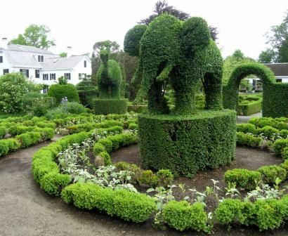 17 Best 1000 images about Creative Topiary on Pinterest Gardens Maze
