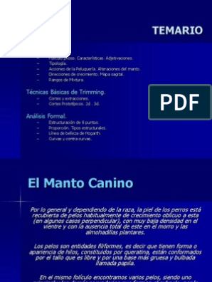 El Manto Canino Pdf Reading