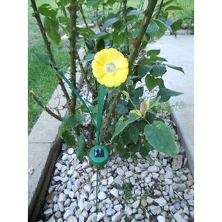 Shop for Tricod Ballerina Yellow Paddle Trumpet Flower Solar Light (Set of 2). Free Shipping on orders over $45 at Overstock.com - Your Online Garden