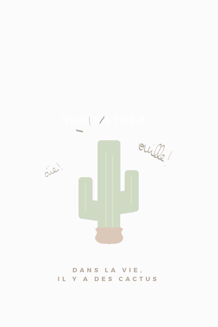 Wallpaper Dans La Vie Il Y A Des Cactus Blog Du Dimanche Fond D Ecran Telephone Fond Ecran Fond D Ecran Pastel