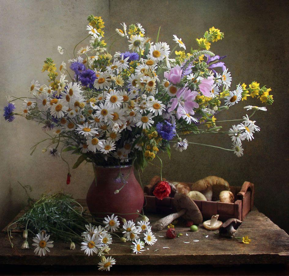 помощью этих фотонатюрморты цветы полевые вам
