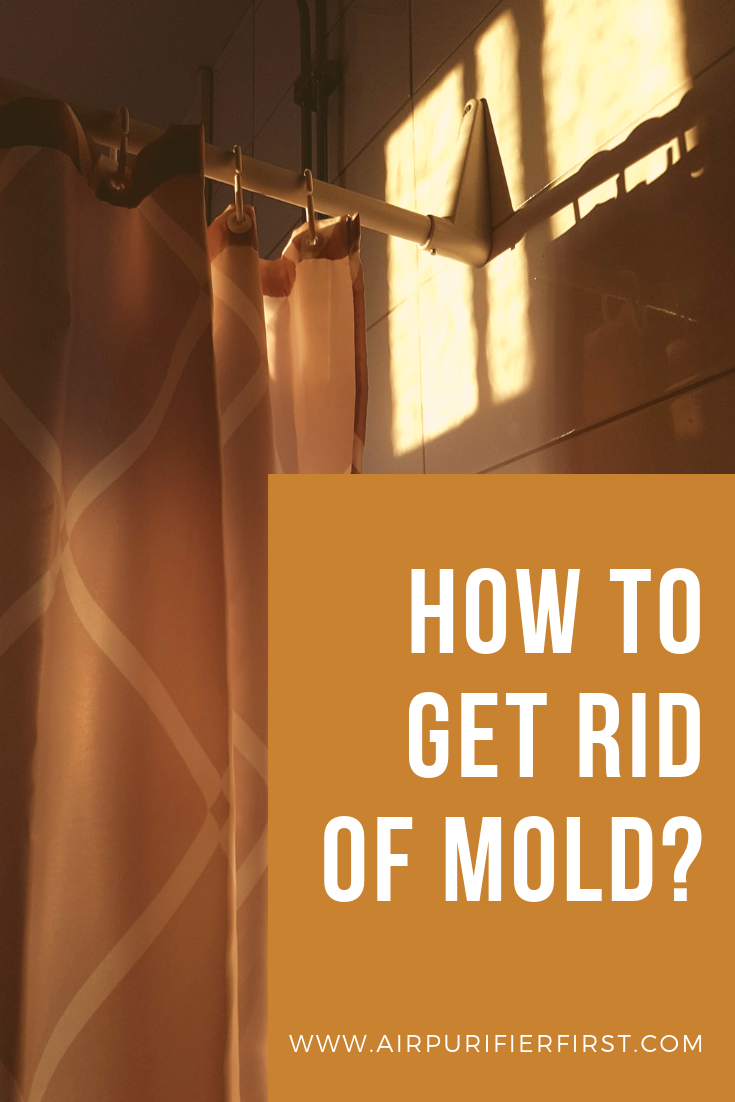 How to Get Rid of Mold? Get rid of mold, How to get rid