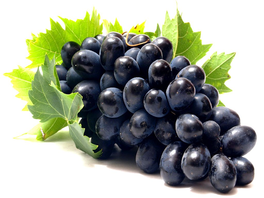 Wallpaper fruits free download - Mobile Grapes Hd Wallpaper Free Download